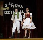 saffovka_2014_17